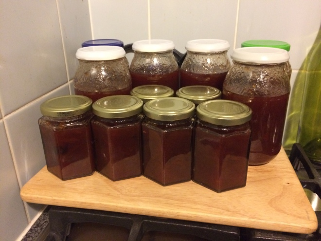 Plum & Ginger Jam